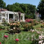 Проведение конкурса роз в парке Золотой Головы (Parc de la Tête d'Or), Лион, Франция