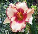 "Лилейник ""Ageless Beauty"" (Hemerocallis)"